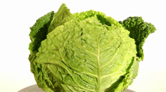 savoy cabbage - stock footage