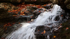Falls and Fall Foliage Loop Stock Footage