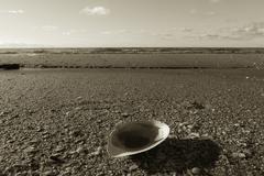 beach in solitude - stock photo