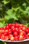 Many ripe cherries in the plate Stock Photos