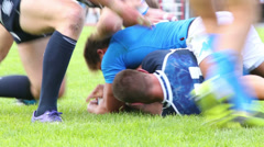 Rugby players fighting over ball on grass - stock footage