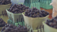 Stock Video Footage of Baskets of blueberries