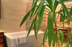 Ylellinen kylpyhuone uusi koti Kuvituskuvat