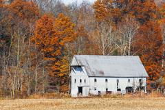 Whtie Barn and Autumn Leaves Stock Photos