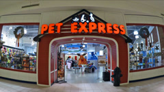 Stock Video Footage of Pet Store storefront zoom-in