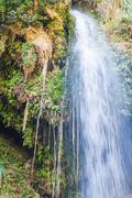 ein gedi spring, israel. - stock photo