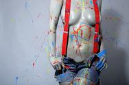 Stock Photo of female house painter splattered with latex paint