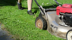 Closeup of meadow grass lawn cut with mower cutter tool Stock Footage