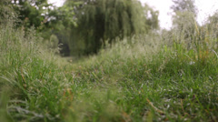 Stranger, walking on the grass 1 Stock Footage