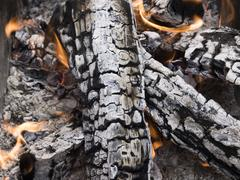 firewood ashes - stock photo
