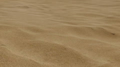 Skeleton in the Desert - stock footage