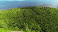 Aerial view of the bay and forrest Stock Footage