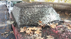 Mini covered in bird pooh 7 Stock Footage