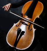 cello musician - stock photo