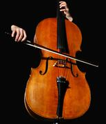 cello on black - stock photo