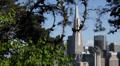 San Francisco Skyline Transamerica Pyramid Famous Iconic Symbol Famous Landmark HD Footage