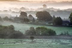 layers of fog over autumn agricultural landscape - stock photo