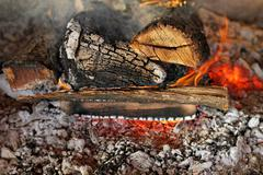 log fire - stock photo