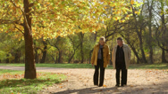 Seniors walking in a park Stock Footage