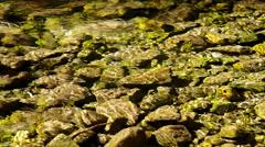 Flowing brook Stock Footage
