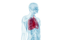 Human lung Stock Footage