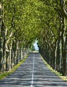 Road near carcassonne (france) Stock Photos