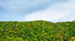 Thai mountains Stock Photos