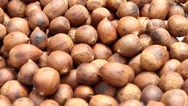 Stock Video Footage of roasted chestnuts