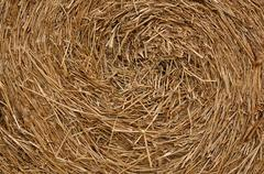 Close up roll of haystack, swirl pattern. Stock Photos