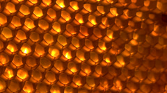 Stock Video Footage of Stock video footage honey comb macro