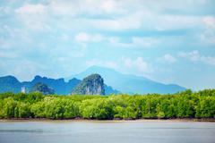 krabi rocks - stock photo