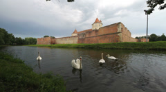 Swans float on lake near old fortress, spring environment Stock Footage