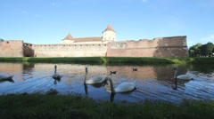Blue light, old fortress reflect on lake, grace swans float and feed - stock footage
