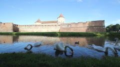 Gorgeous view, gentle swans float on lake surface, old fortress reflect on lake Stock Footage