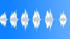 Peacock mulitple calls 05 Sound Effect