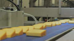 Cheese moves on assembly line, closeup Stock Footage