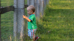 Curious lovely baby try to go in animal courtyard at zoo park, pull on the fence Stock Footage