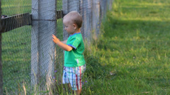Adorable baby boy near fence at zoo park try to lift up Stock Footage