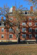 Harvard College Dorms syksyllä Kuvituskuvat