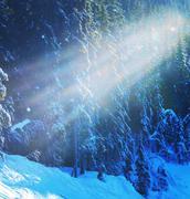 winter season - stock photo