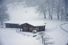 wooden chalet on the italian alps during a heavy snowfall - stock photo