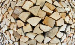 woodshed with logs cut and perfectly aligned for heating during winter - stock photo
