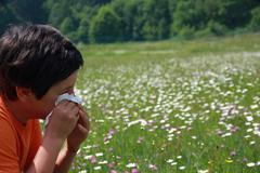 child with an allergy to pollen while you blow your nose with a white handker - stock photo