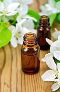 oil aromatic with flowers of apple - stock photo