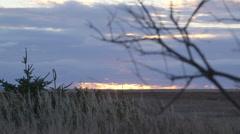 Cloudy sunrise rack focus Stock Footage