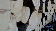 615 side view image of the logs neatly piled Stock Footage