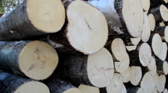 Closer and full view of the neatly piled cut logs Stock Footage