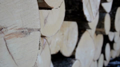 A more up-close image of the wood ends of the logs Stock Footage