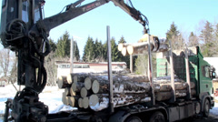 Log forwarder unloading piles of logs from the truck Stock Footage