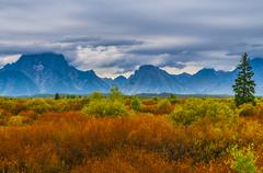 fall in grant tetons - stock photo